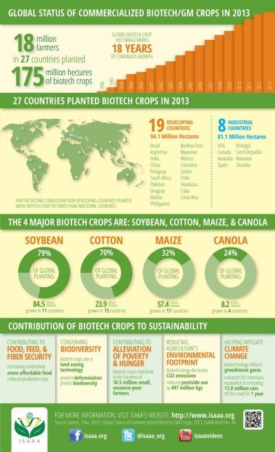 Infografia-ISAAA-Cultivos GM2013 -1 (1)