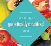 cover-GMO_ENG