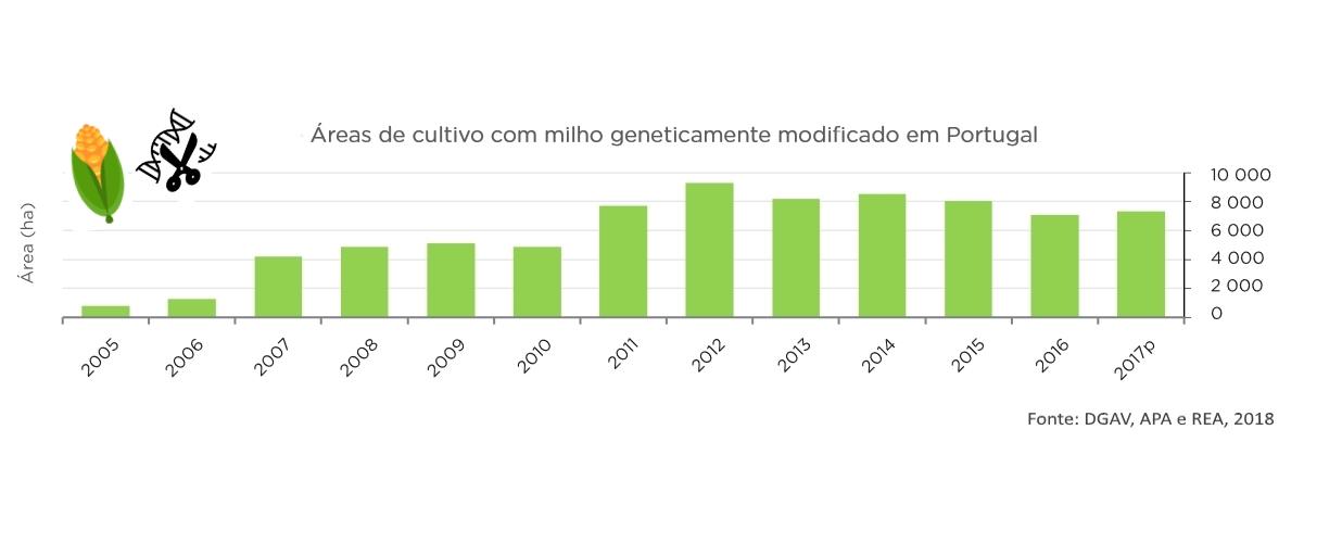 OGM, Gráfico, Milho geneticamente modificado, Milho Bt, Portugal, Área Cultivada, Transgénicos,
