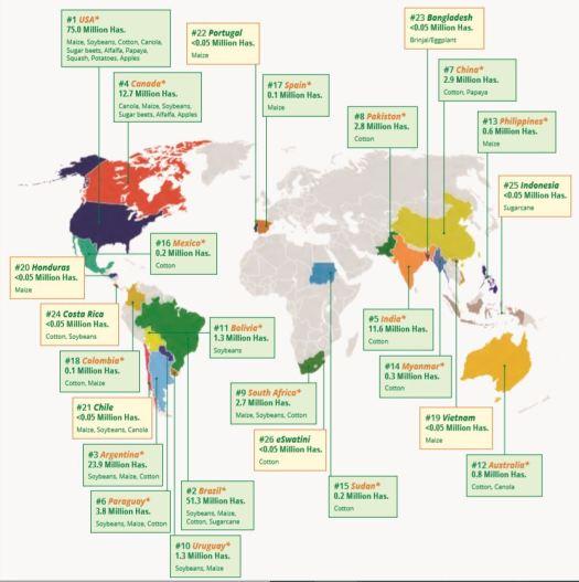 mapa OGM