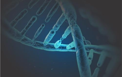 biotecnologia-1012x640