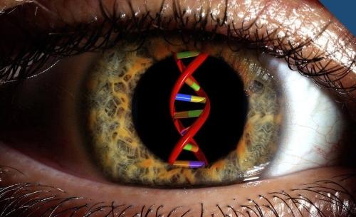 CRISPR cegueira